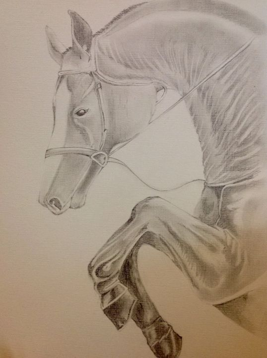 Horse pencil sketch - kanika sharma