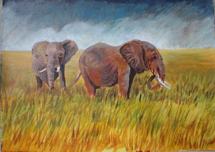 African elephants - David Jackson