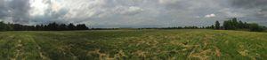 Field Eleven