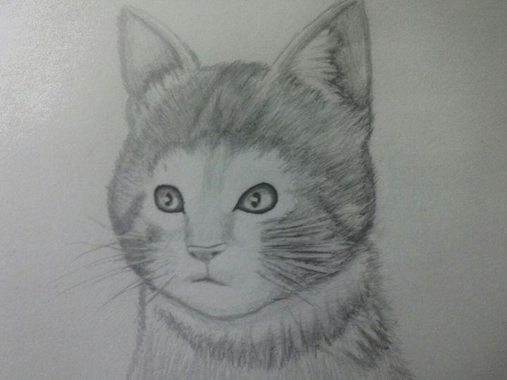 Kitten - MikeB