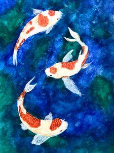 Koi fish - Arah