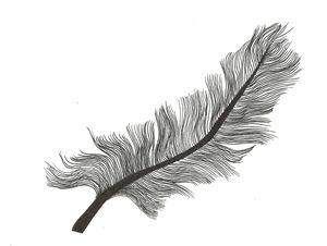 Feather - Cassandra