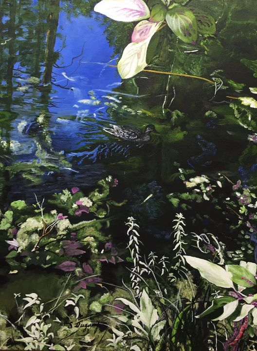 Mission Creek Pond - Sharon Duguay