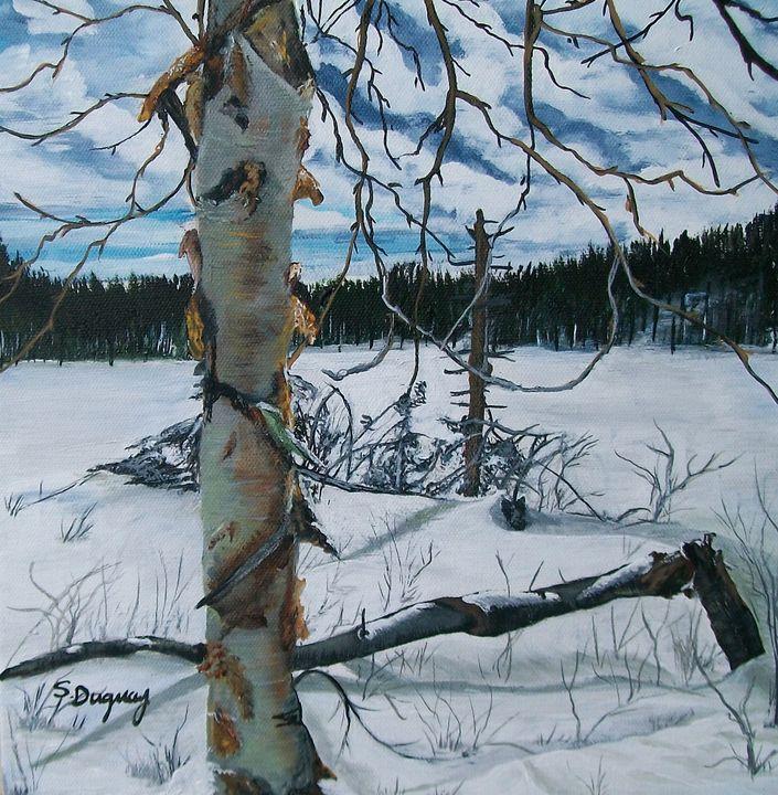 Winter Solitude - Sharon Duguay