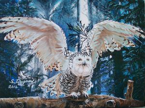 Snowy Owl on Takeoff - Sharon Duguay