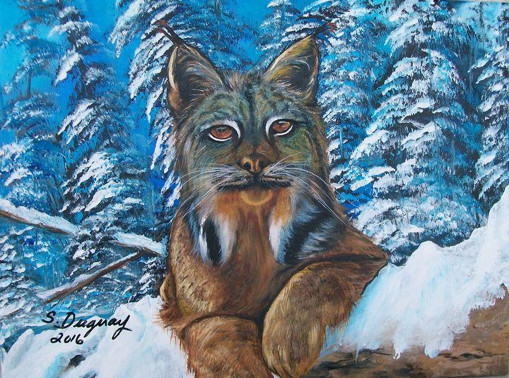 Canadian Lynx - Sharon Duguay
