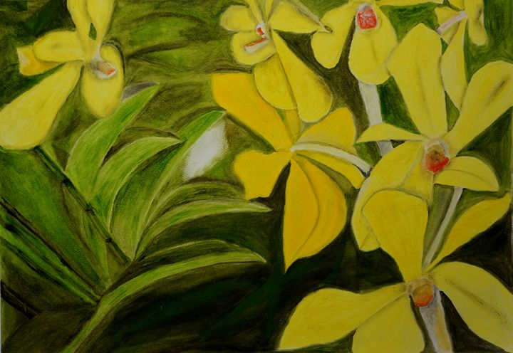 Yellow Orchids - Tanmay