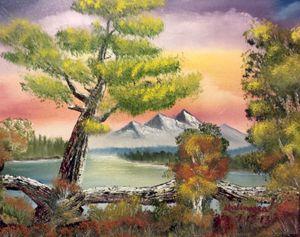Old Bark tree by Lloyd B