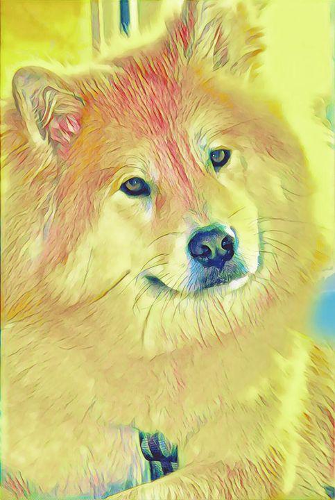 Dog 1 - Sophia Brown