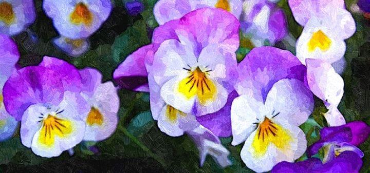 Purple Flower - Sophia Brown