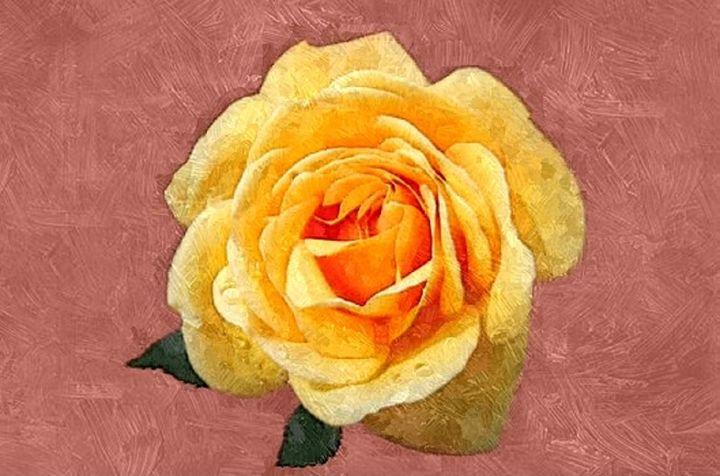 Rose - Sophia Brown