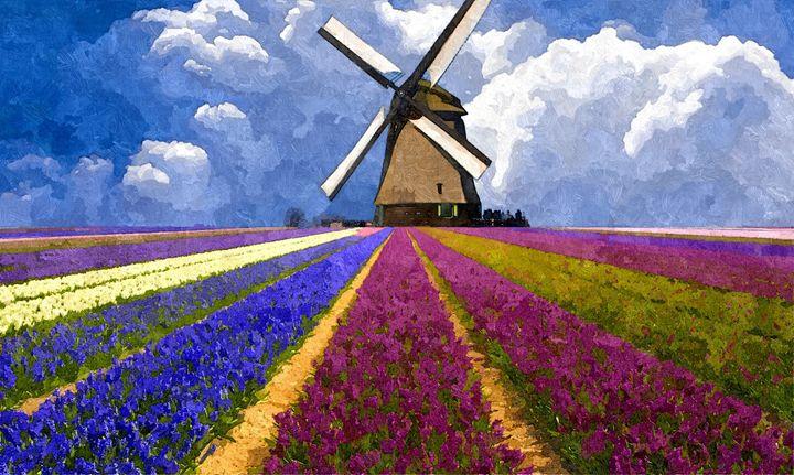Flower field in the Netherlands - Sophia Brown