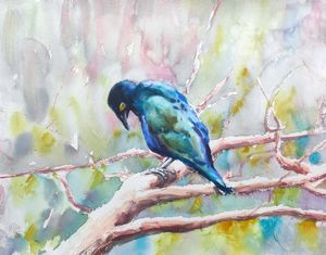 Purple Glossy Starling I. - Ibolya Taligas Watercolours