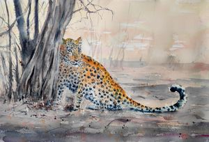SHY LEOPARD - Ibolya Taligas Watercolours