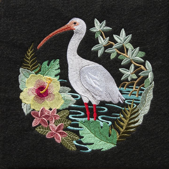 Embroidered Ibis - Sally Weigand Images