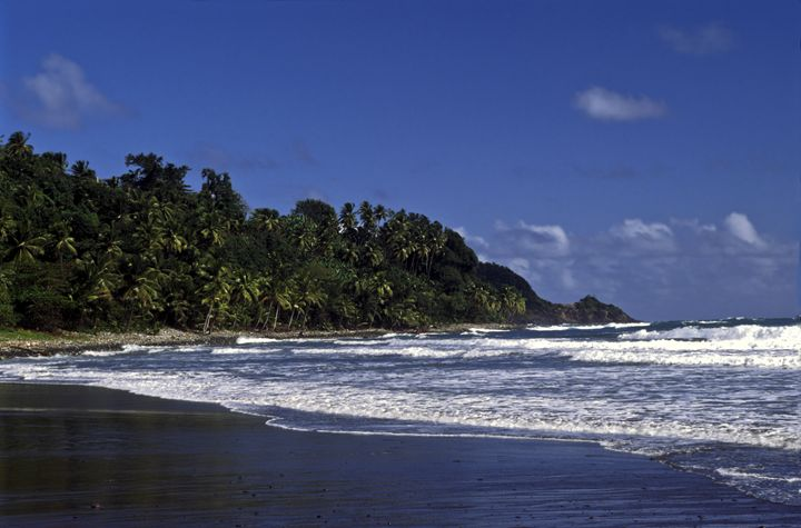 Dominica Coast - Sally Weigand Images