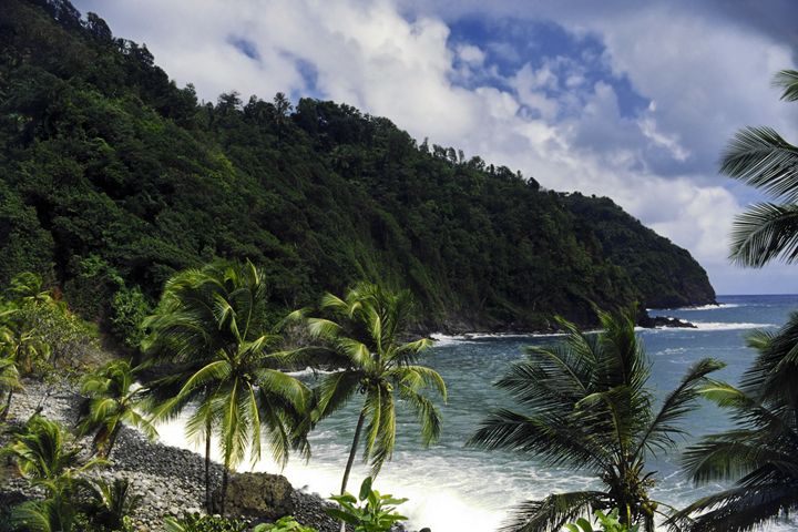 Dominica Coastal Scene - Sally Weigand Images