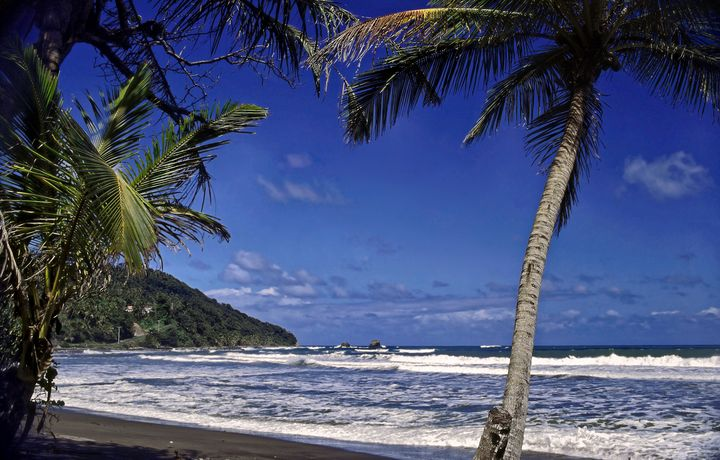 Pagua Bay Dominica - Sally Weigand Images
