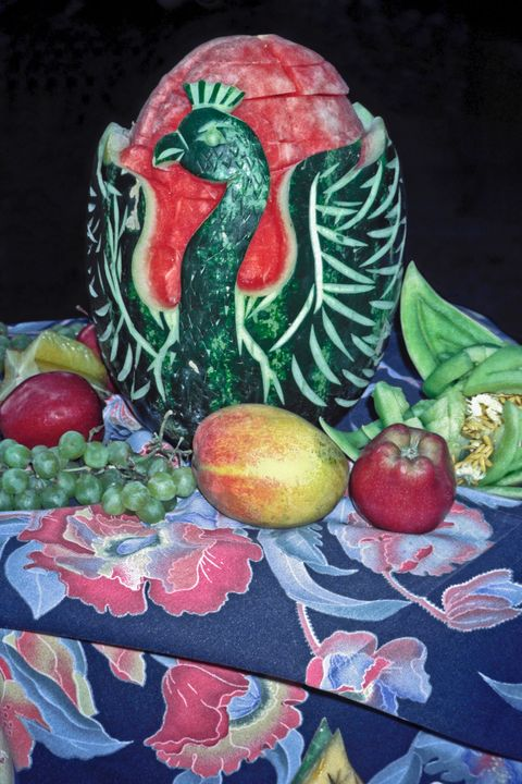 Watermelon Swan - Sally Weigand Images