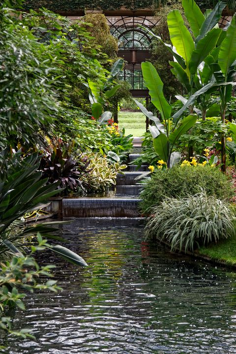 Longwood East Conservatory - Sally Weigand Images
