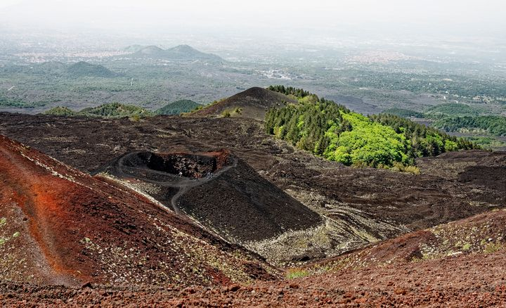 Mount Etna Crater & New Growth - Sally Weigand Images