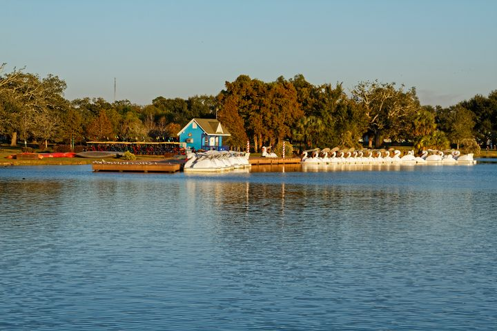 Big Lake at New Orleans City Park - Sally Weigand Images