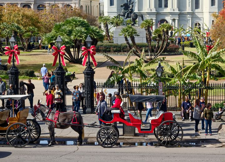 Horse Drawn Carriages New Orleans - Sally Weigand Images