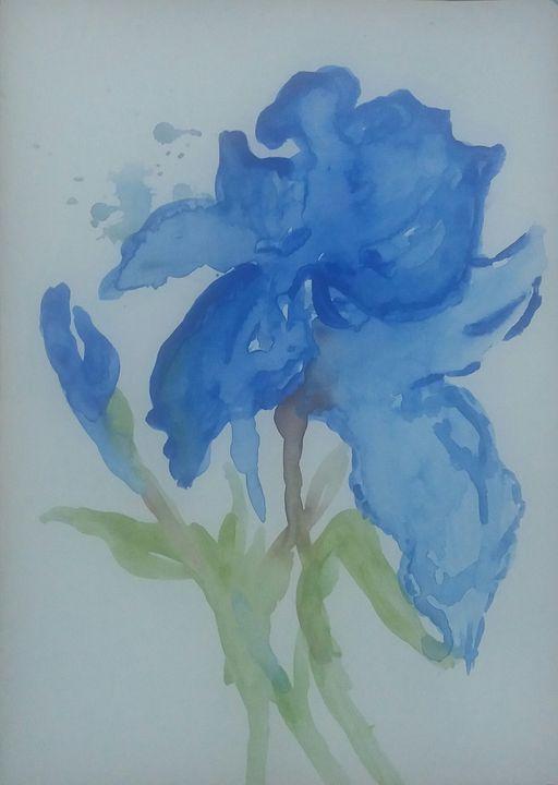 Blue Color Flower - NKAA