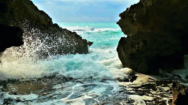 Secret Cove - Jonathan M. Schwartzman