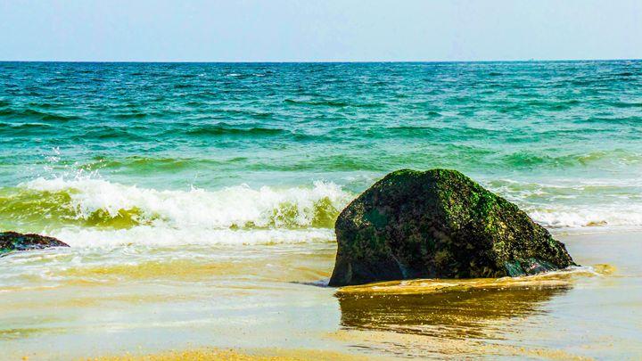 Jersey Shore - Jonathan M. Schwartzman