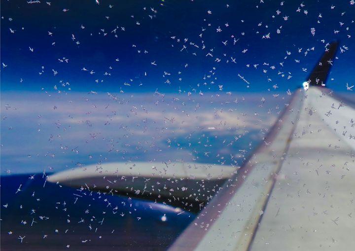 Airplane Frost - Jonathan M. Schwartzman