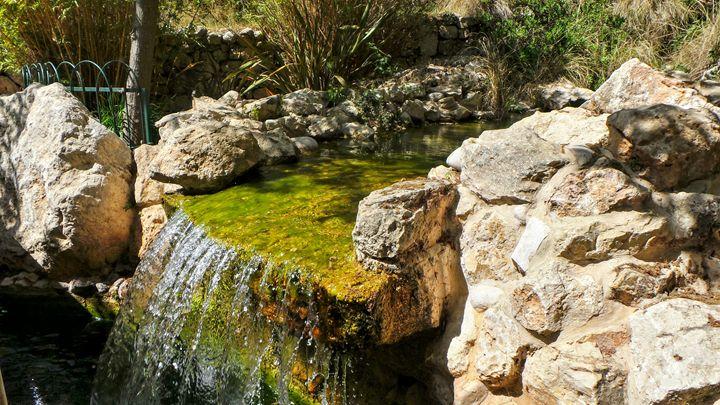 Jerusalem Zoo Falls - Jonathan M. Schwartzman