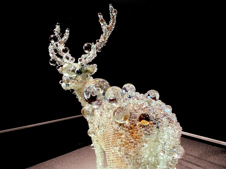 Glass Deer - Jonathan M. Schwartzman