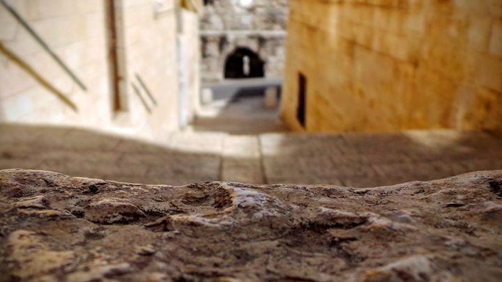 Stepping Stone - Jonathan M. Schwartzman