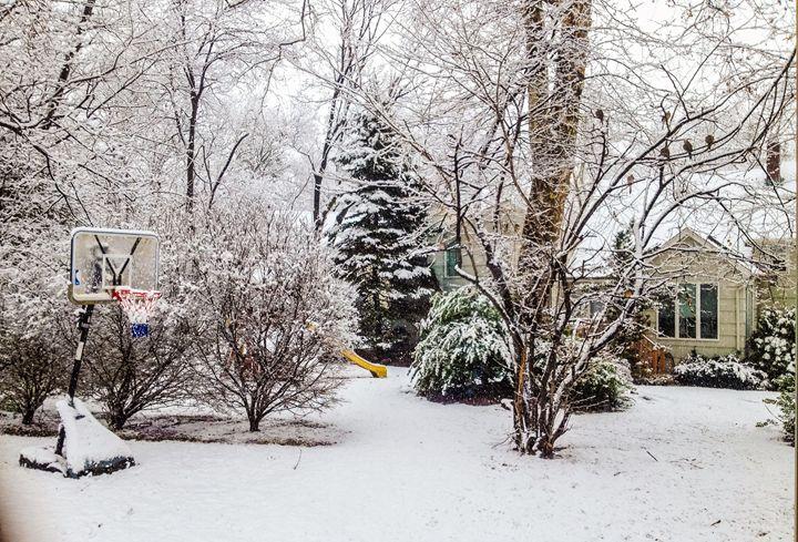 Snow Day - Jonathan M. Schwartzman