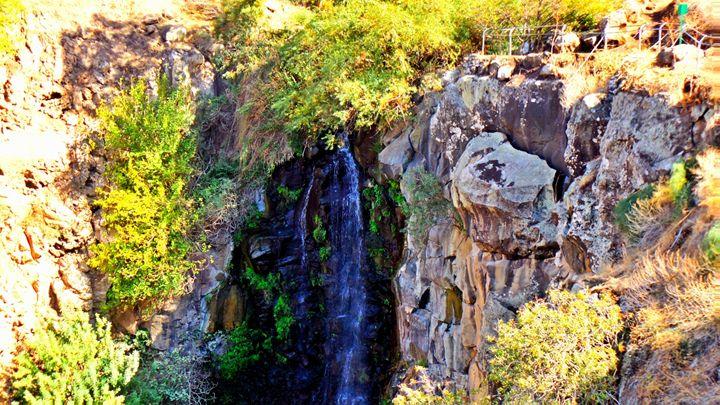 Golan Waterfall - Jonathan M. Schwartzman