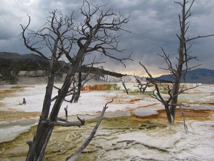 Yellowstone - Project 32