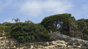Cliffscape