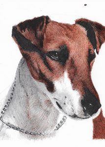 Smooth-haired fox terrier commission