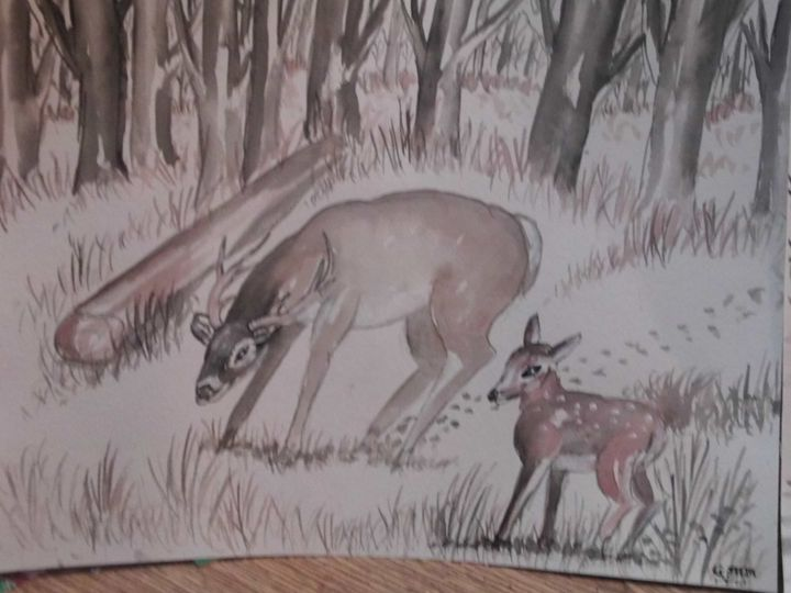 Doe and fawn in forest - Carl Morgan