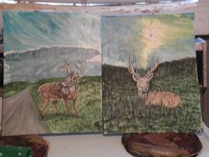 Whitetails with skyscapes at Chavies