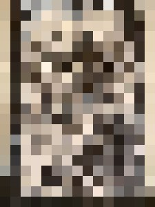 2020111701 - Dahmer Art