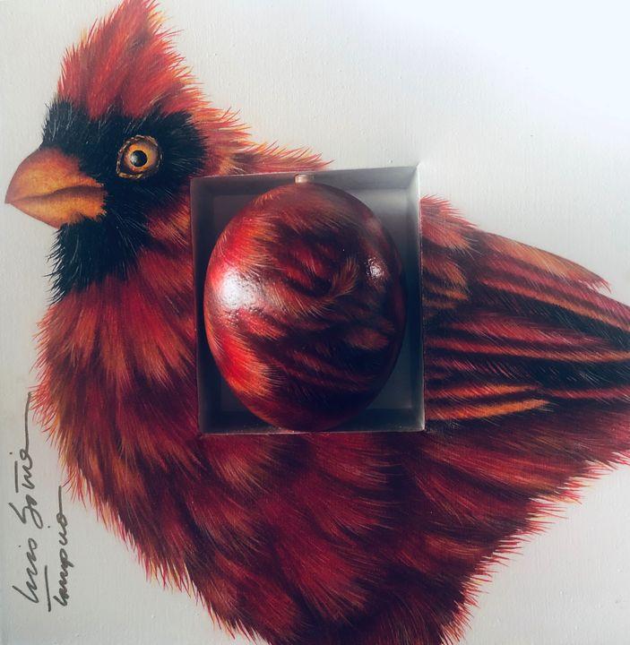 The Cardinal - Medart