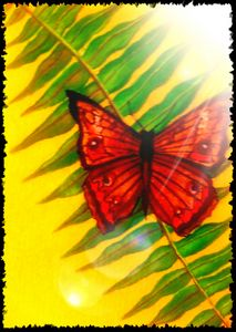 Butterfly on leaf Three
