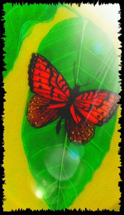 Butterfly on leaf one - At The Unicorn