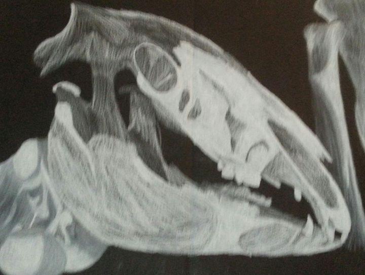 Horse Skull - Art by Audriana