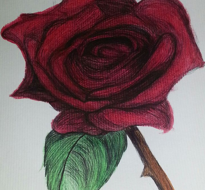 Rose - Art by Audriana