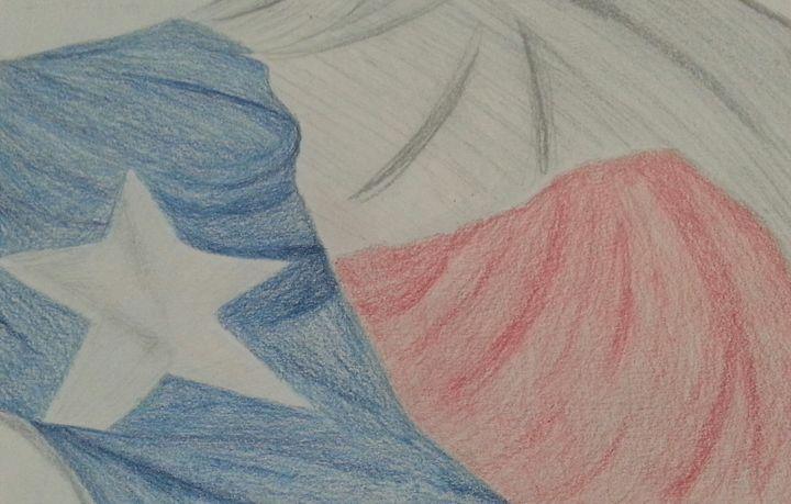 Texas Flag - Art by Audriana