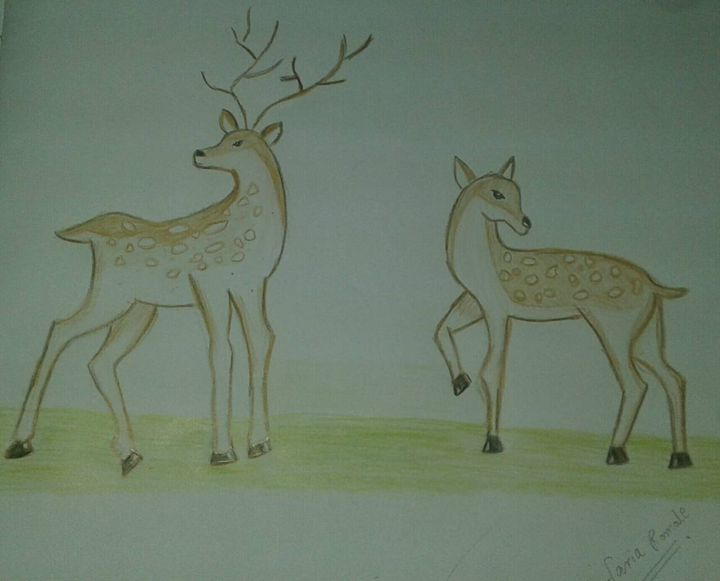 Pair of deers - Faria Romale