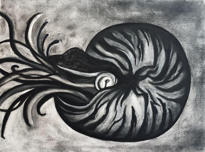 Nautilus - Art Attack